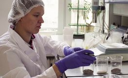 科学家在称土壤样品的实验室 免版税图库摄影