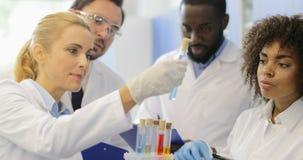 科学家妇女举行套分析与研究员队的试管液体在实验期间在现代实验室 股票录像