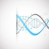 科学模板、蓝色墙纸或者横幅与脱氧核糖核酸分子 皇族释放例证