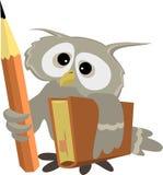 科学的猫头鹰 免版税库存照片