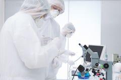 科学研究对化学实验室 库存照片