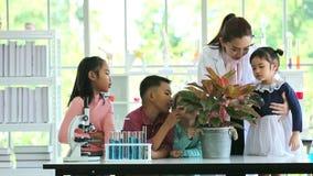 科学类、男孩和女孩神色的亚裔学生通过生叶的放大镜 股票录像
