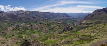 科尔卡峡谷全景,秘鲁,南美 修造Farmin的印加人 免版税库存照片