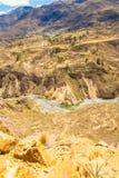 科尔卡峡谷,秘鲁在南美 建立种田的印加人与池塘和峭壁的大阳台 其中一个在世界的最深的峡谷 库存图片
