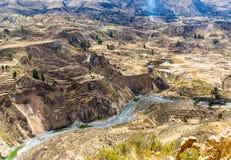 科尔卡峡谷,秘鲁,南美。建立种田的印加人与池塘和峭壁的大阳台。其中一个在wor的最深的峡谷 库存照片