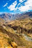 科尔卡峡谷,秘鲁,南美 建立种田的印加人与池塘和峭壁的大阳台 其中一个在世界的最深的峡谷 库存图片