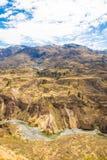 科尔卡峡谷,秘鲁,南美 建立种田的印加人与池塘和峭壁的大阳台 其中一个在世界的最深的峡谷 库存照片