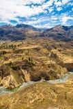 科尔卡峡谷,秘鲁,南美 建立种田的印加人与池塘和峭壁的大阳台 其中一个在世界的最深的峡谷 免版税库存照片