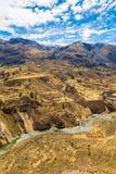 科尔卡峡谷,秘鲁,南美 建立种田的印加人与池塘和峭壁的大阳台 其中一个在世界的最深的峡谷 图库摄影