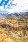 科尔卡峡谷,秘鲁,南美 建立种田的印加人与池塘和峭壁的大阳台 其中一个在世界的最深的峡谷 免版税库存图片