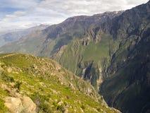 科尔卡峡谷,阿雷基帕,秘鲁。 免版税库存照片