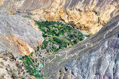 科尔卡峡谷绿洲 库存图片