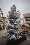 科尔马法国圣诞节时间圣诞树 免版税库存图片