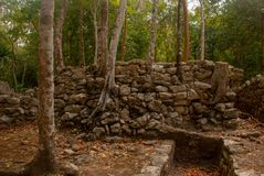 科巴是一个考古学区域和尤卡坦半岛一个著名地标  墨西哥 尤加坦 免版税库存照片