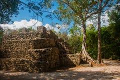 科巴,墨西哥,尤加坦:考古学复合体、废墟和金字塔在古老玛雅城市 免版税库存图片