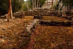 科巴,墨西哥,尤加坦:考古学复合体、废墟和金字塔在古老玛雅城市 库存照片