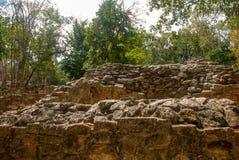 科巴,墨西哥 古老玛雅城市在墨西哥 科巴是一个考古学区域和尤卡坦半岛一个著名地标  森林arou 图库摄影