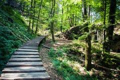 科教文组织国家公园在克罗地亚 免版税图库摄影