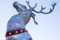 科文特花园圣诞节驯鹿 图库摄影