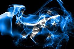 科珀斯克里斯蒂市烟旗子,得克萨斯状态,上午美国  向量例证