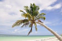 科科岛在古巴 免版税库存照片