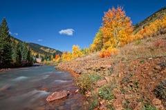 科罗拉多在秋天的山小河 库存图片