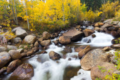科罗拉多山小河秋天风景 库存图片