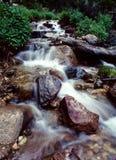 科罗拉多山流 免版税库存图片
