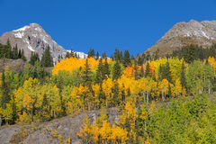 科罗拉多山秋天风景 免版税图库摄影