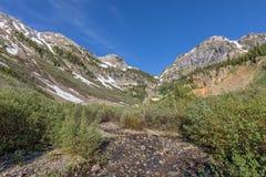 科罗拉多山风景在夏天 库存图片