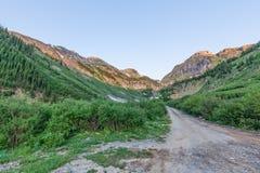 科罗拉多山Backroad在夏天 图库摄影