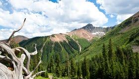 科罗拉多山ophir范围 库存图片
