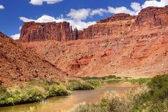 科罗拉多河在拱门国家公园默阿布犹他附近的岩石峡谷 库存照片