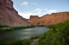 科罗拉多河 免版税库存图片