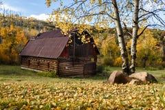 科罗拉多的秋天的红色谷仓 免版税库存照片