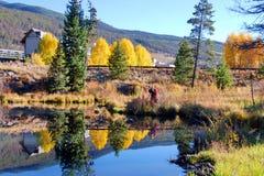科罗拉多秋天的风景摄影师 库存照片