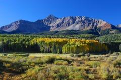 科罗拉多落矶山在秋天 免版税库存照片