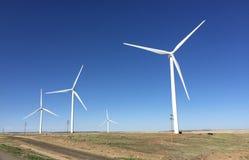 科罗拉多风力场 免版税图库摄影