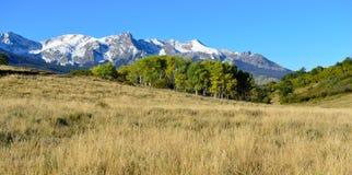 科罗拉多高山风景在叶子期间的 免版税库存照片