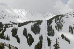 科罗拉多滑雪倾斜 库存图片