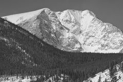 科罗拉多Ypsilon山洛矶山国家公园 库存图片