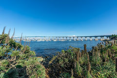 科罗纳多海湾桥梁 免版税库存照片