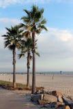 科罗纳多海滩胜地 库存照片