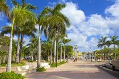 科苏梅尔,墨西哥,加勒比 免版税库存图片