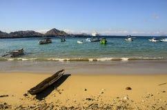 科莫多岛海岛海滩 免版税库存图片