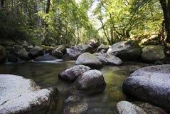 科西嘉岛河 库存照片