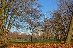 科隆与无线电铁塔和officebuildings的市parc,构筑由光秃的冬天树 图库摄影