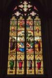 科隆污迹玻璃窗大教堂  免版税库存照片
