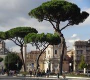 科隆纳Traiana在罗马 意大利 库存照片