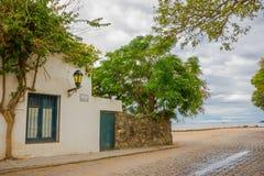 科洛尼亚德尔萨克拉门托,乌拉圭- 2016年5月04日:大树在一个古老壁角房子的庭院里接近海滩的 库存图片